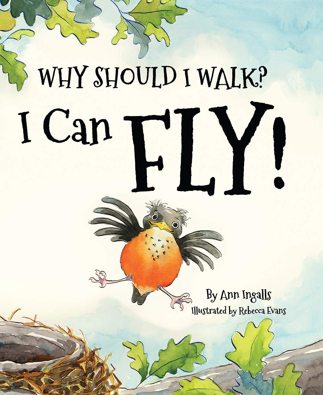 Why Should I Walk? I Can Fly!